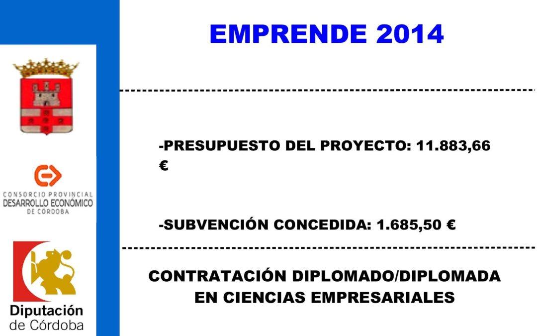 Contratación diplomado/diplomada en ciencias empresariales 1