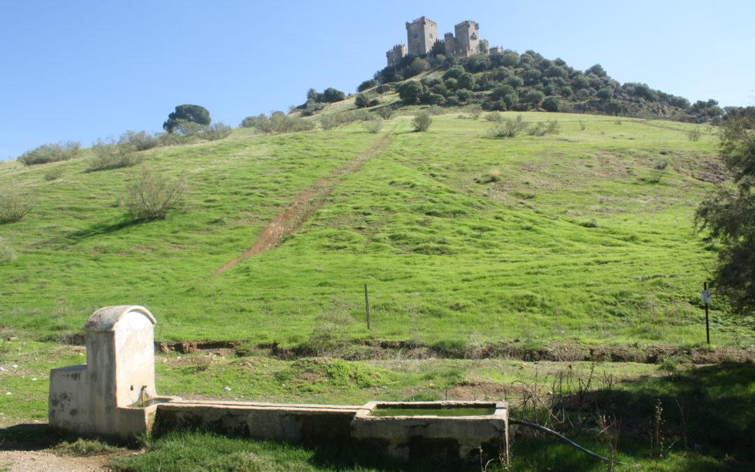 Fuente del Cerro del Castillo