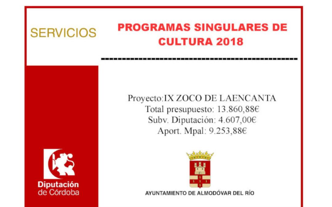 Programas singulares de cultura 2018 - IX Zoco de la Encantá 1