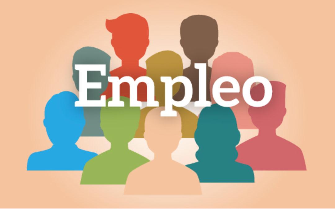 Criterios de contratación del Servicio Andaluz de Empleo (SAE) de la Junta de Andalucía 1